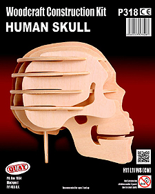 Spirit Games (Est. 1984) - Supplying role playing games (RPG), wargames rules, miniatures and scenery, new and traditional board and card games for the last 20 years sells Kit: Human Skull